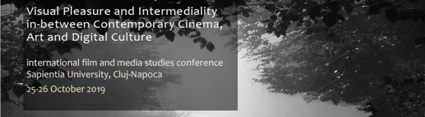 The Picturesque : Visual Pleasure and Intermediality in-beteen Contemporary Cinema, Art and Digital Culture